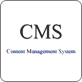 content system manager